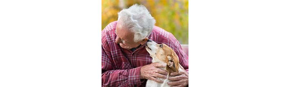 Health Benefits of Pets for Seniors & the Mobility Impaired