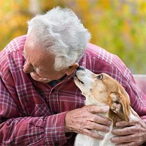 Dogs and other pets can provide health benefits to seniors