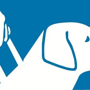Guide dogs can help the disabled